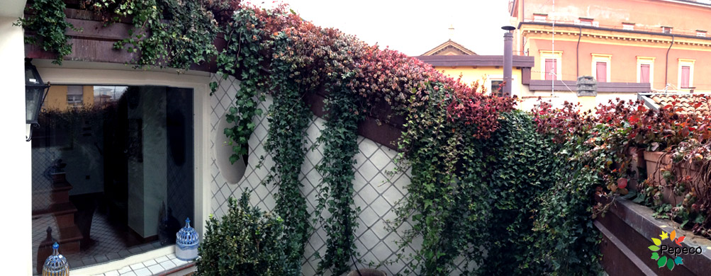 Pepeco giardiniere e giardini a bologna home page for Giardiniere bologna